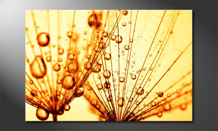 Das Leinwandbild Dandelion Seed