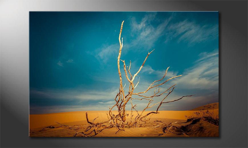 Das Leinwandbild Desert Landscape