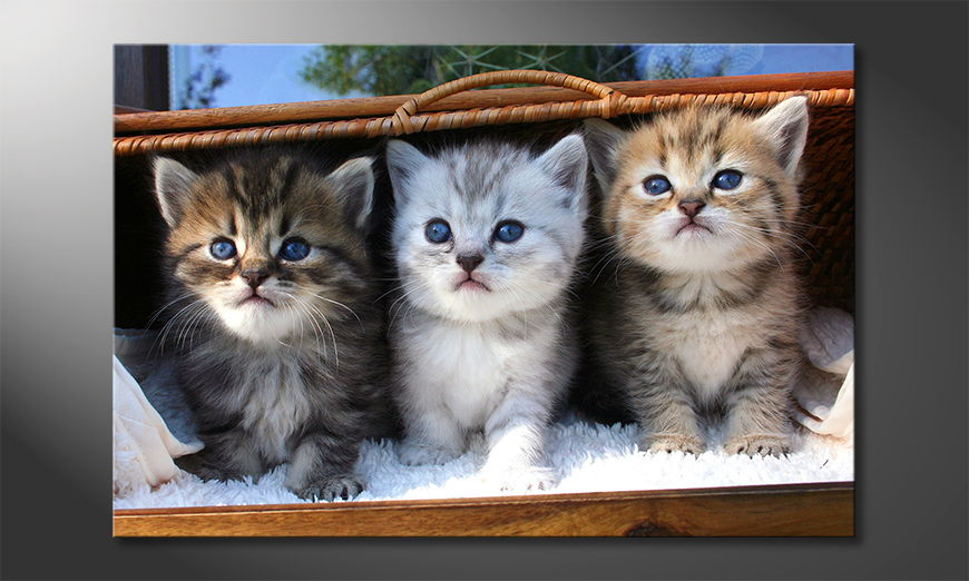 Das Leinwandbild Three little friends