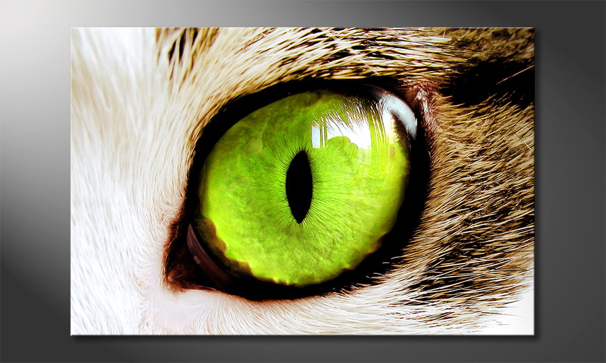 Das Wandbild Cats Eye