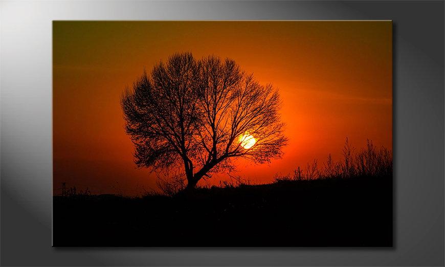 Das gedruckte Bild Red Sunset