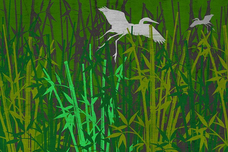 Vlies-Tapete Bambuswald ab 120x80cm
