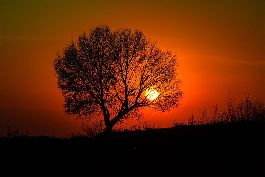Vliestapete Sonnenuntergang ab 120x80cm